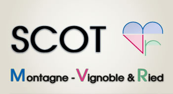 SCOT MVR Montagne - Vignoble & Ried